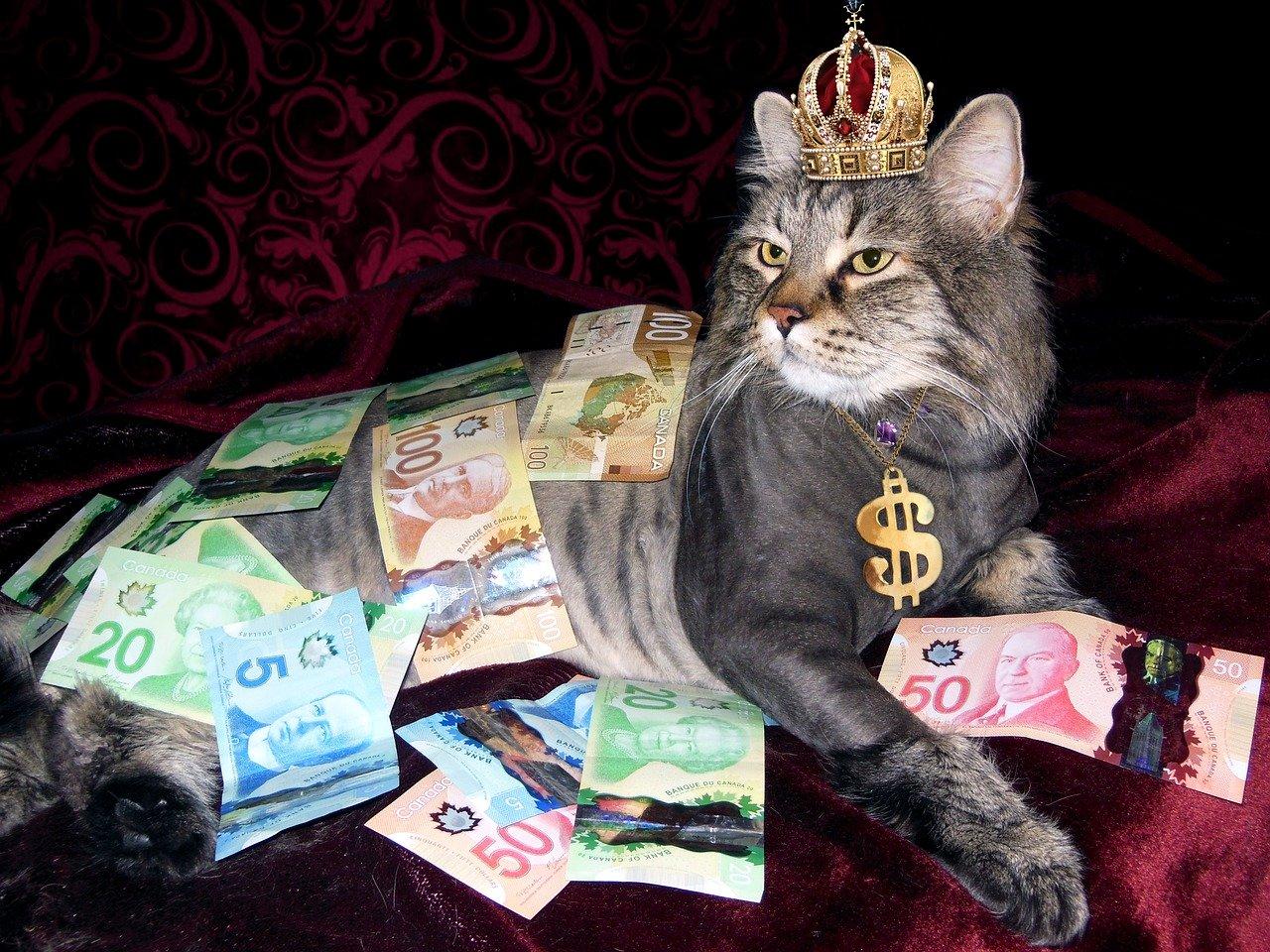 money-1144553_1280